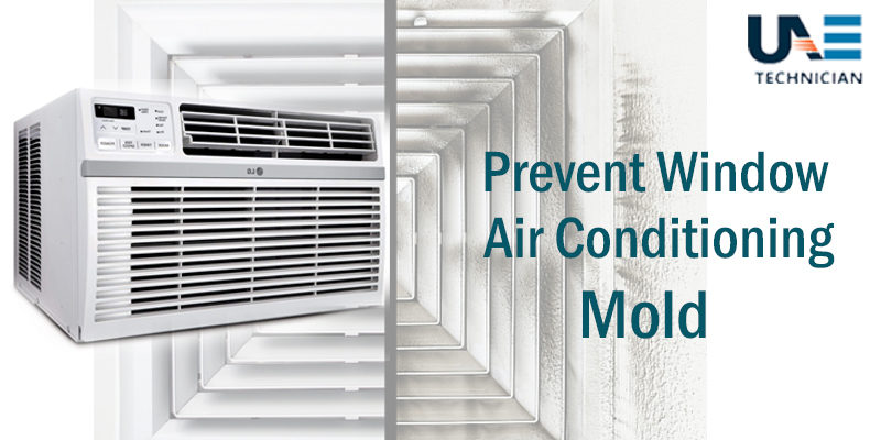 Prevent Window Air Conditioner Mold