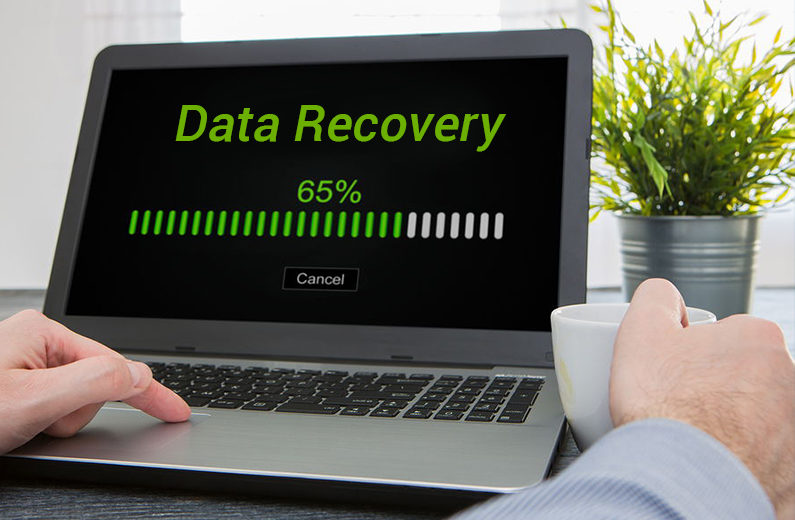 Know the Best File Recovery Software in the Market to Recover Your Lost Data Instantly