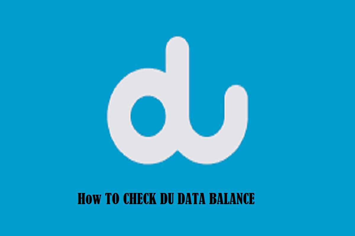 how to check du data balance